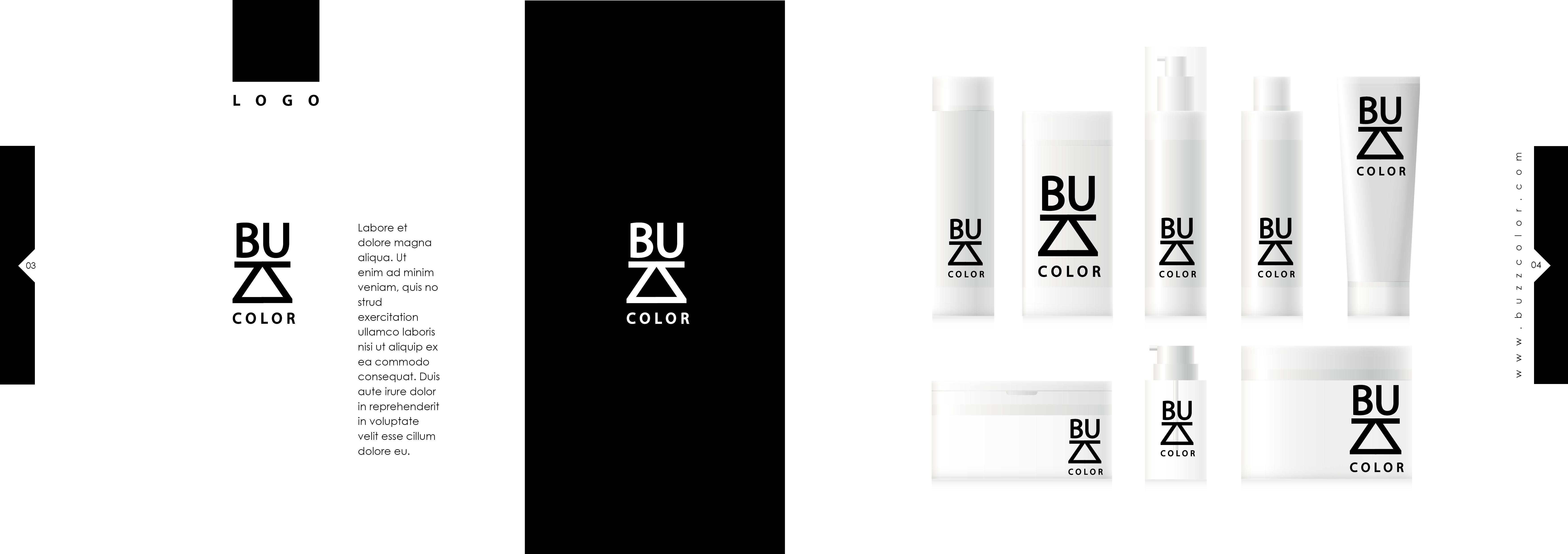 brandbookbuzzcolor3
