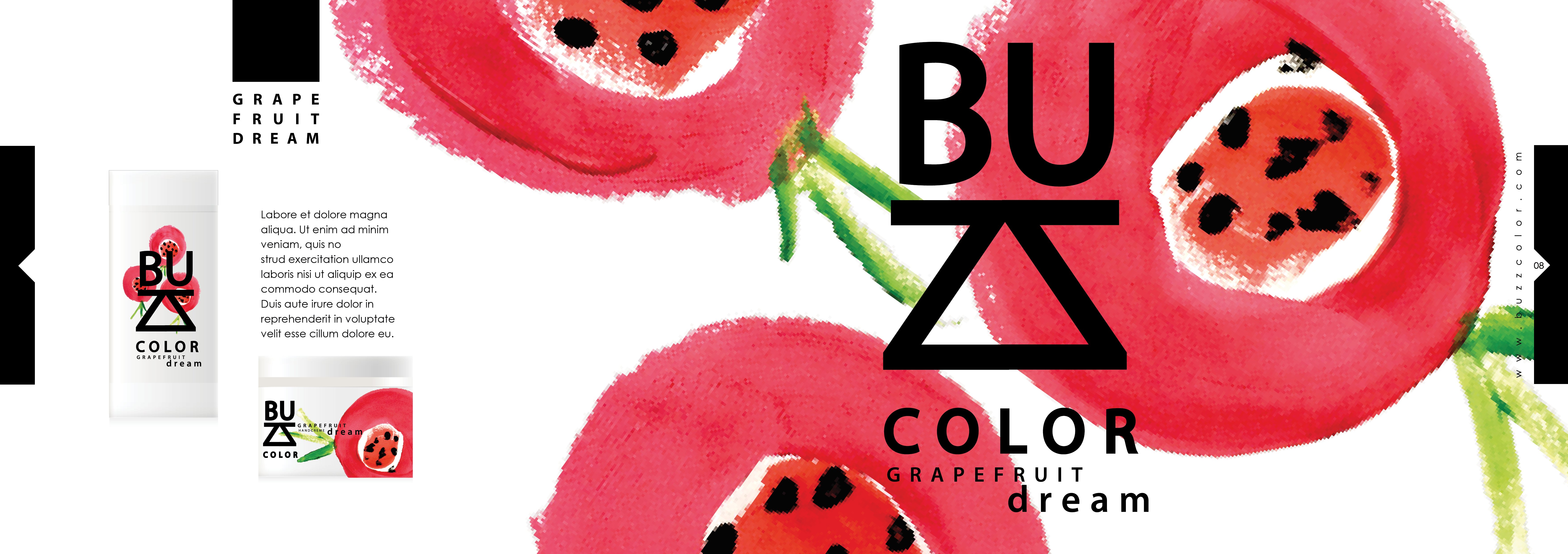 brandbookbuzzcolor5